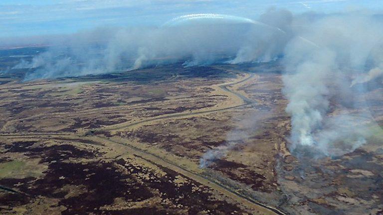 Emergencia ambiental por los incendios en el Delta entrerriano