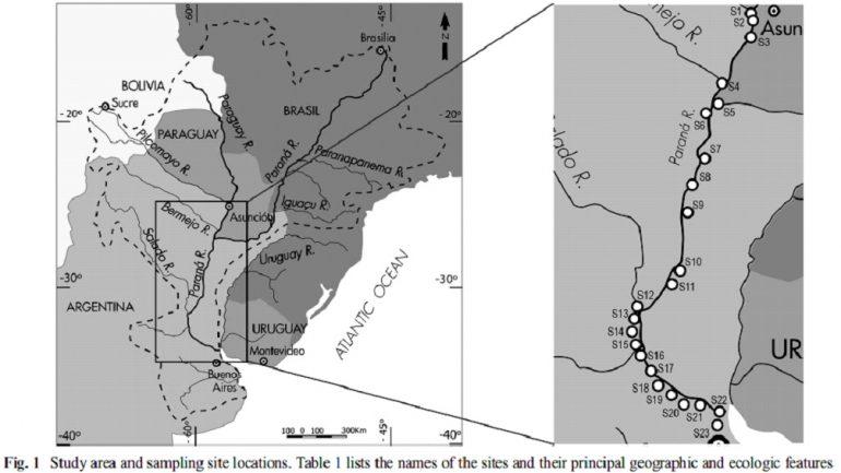 La cuenca del Paraná ¿contaminada con glifosato?