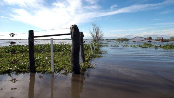 Se declaró la emergencia agropecuaria para las zonas inundadas