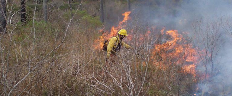 Prohíben realizar quemas hasta el 28 de febrero