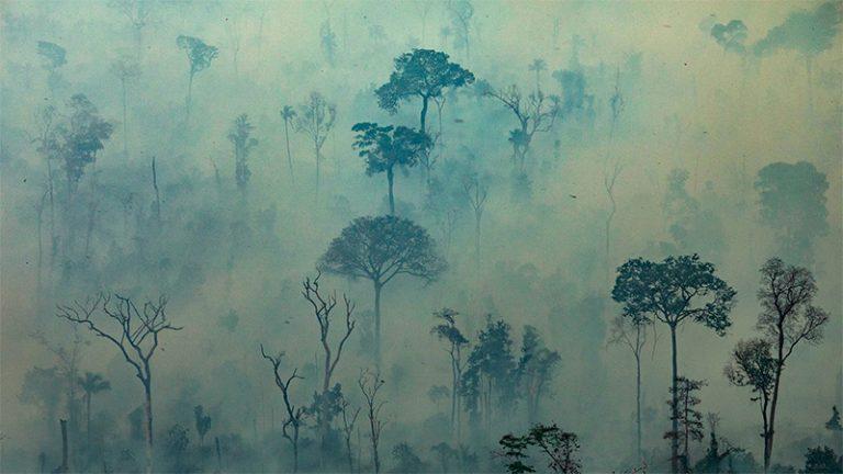 Incendios en el Amazonas: El humo ya afecta a Entre Ríos