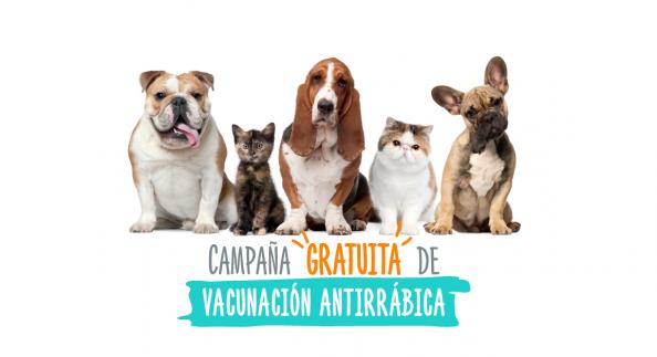 Vacunación antirrábica en Cerrito