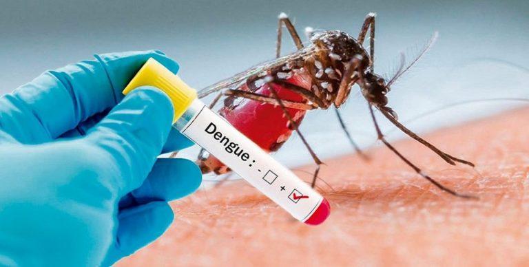 Confirman nuevo caso de dengue: ya son ocho en la provincia