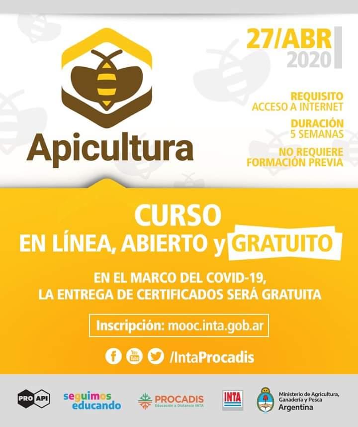 Curso gratuito sobre apicultura