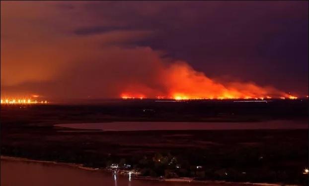 """Se controlaron los incendios, pero el ministro de Ambiente habló de una """"masacre ambiental"""""""