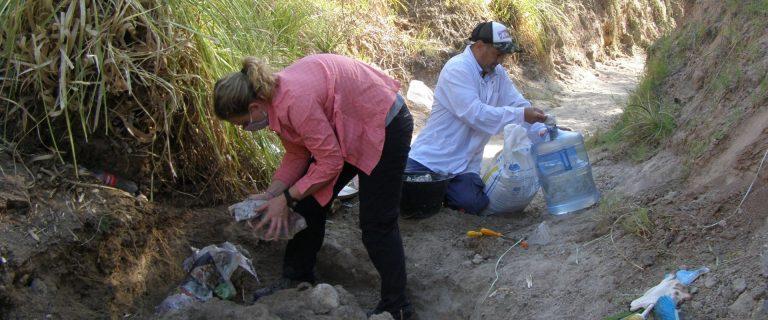 El Museo Serrano realizó el rescate de fósiles en el arroyo Espinillo