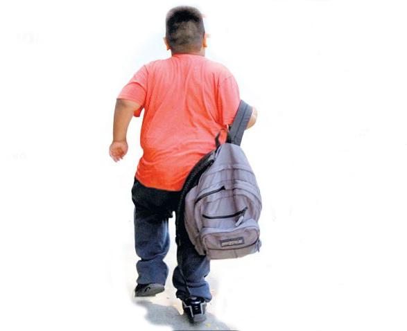 Niñez y obesidad: responsabilidades familiares